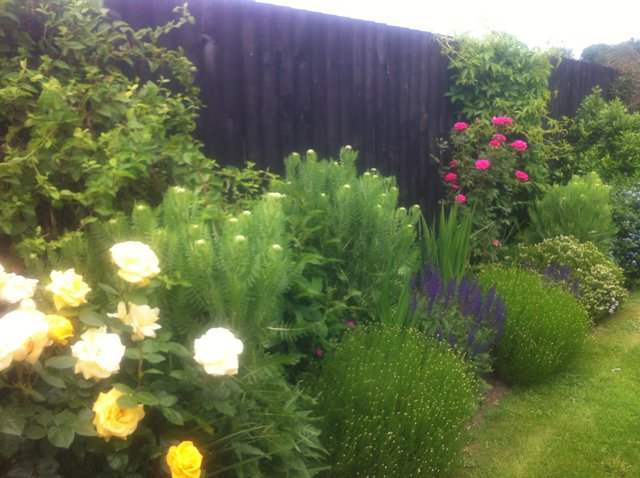 Border Project - Click to make an enquiry