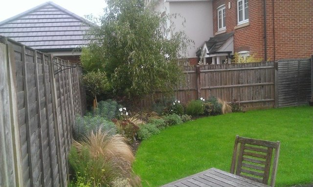 Modern garden planting - Click to make an enquiry